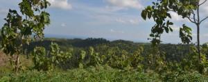 Topografi Karst Malang Selatan