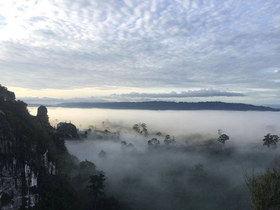 Tutupan Tajuk Karst Mangkuris dari Puncak (Foto: FPKKT)