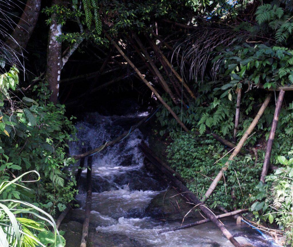 Aliran Air yang keluar dari mulut Gua Sibibijilan (Dok. Lawalata IPB, 2016)